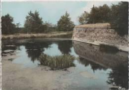 BERGUES - Le Canal Des Rois - Bergues