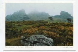 ENGLAND - AK 152801 Nebelschwaben In Dartmoor Bei Manaton - Altri