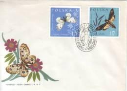Fauna - Butterfly - Vlinder - Papillon / Parnassius Mnemosyne - Acherontia Atropos - Papillons