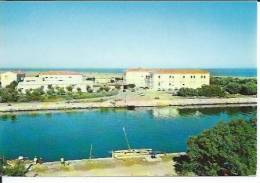 11 - PORT-LA-NOUVELLE - VUE GENERALE - PARTIE DU PARC - Port La Nouvelle
