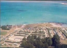 29 - Série La Bretagne En Couleurs : PLOUNEOUR-TREZ Le Camping Face à La Mer CTV1867 - France