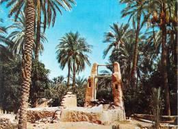 Afrique >Lumière Et Beauté  D' Algérie > SAHARA-L'OASIS ( Editions : Sapra N° 130)* PRIX FIXE - Unclassified