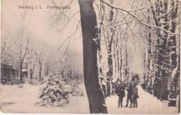 SARREBOURG - SAARBURG - I.L. Freiheitsplatz - Animé - Soldats Allemands Et Français - 1919 - Sarrebourg