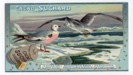 Chromo SUCHARD, 104 / 10, Fauna Polaris, La Mouette - Suchard