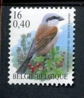 213439815 BELGIE POSTFRIS MINT NEVER HINGED EINWANDFREI  OCB 2885 VOGELS BIRDS BUZIN - 1985-.. Birds (Buzin)
