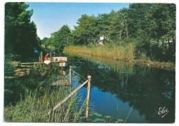 Cpsm: 33 CAZAUX (ar. Bordeaux) Le Canal (Pêcheurs) N° 363 - France