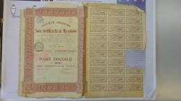 13H - SA Soie Artificielle De Myszkow PArt Sociale Siège à Renaix 1924 - Textile