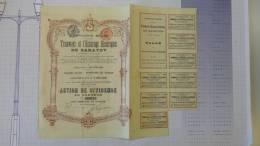 13H - SA Compagnie Belge Pour Les Tramways Et éclairage électrique De Saratov Action De Dividende 1907 - Transports