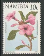 Namibia Nambibië 1997 Mi 877 ** Adenium Boehmianum : Bushman Poison / Pylgif - Cactussen