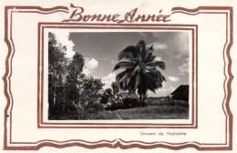 -CPSM - BONNE ANNEE - Souvenir De L'Indochine - 584 - Other