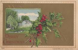 CPA - Merry Christmas - Carte Gaufrée - Non Classificati