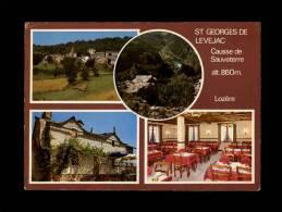 48 - SAINT-GEORGES-DE-LEVEJAC - Hôtel-Restaurant Malaval - Multi Vues - Villefort