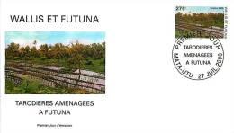 2000  Tarodières A Futuna Yv 543 - FDC