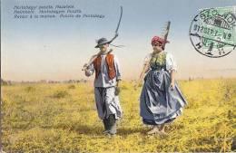 Hongrie - Agriculture - Foin - Oblitération Szolnok 1912 - Hungary