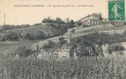 L L 548 /C P A - NUITS-SAINT-GEORGES   -  (21)   UN VIGNOBLE DE GRAND CRU  LE CHATEAU GRIS - Nuits Saint Georges