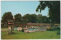 Niagara Falls : FORD THUNDERBIRD 'BULLIT BIRD' - The Sharon Motel, Swimming-pool  - Auto/Car - USA - Turismo