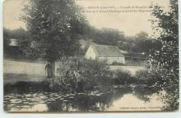 MOUAIS  - Chapelle Saint Marcellin, Sainte Apolline, Au Bord De La Chère. - Sin Clasificación