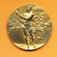Italie Médaille Bronze  IV° CONCORSO ...E.DEL.LAVORO .DI.MUSICA - TORINO 1911 -  Signée Sacchini Milano   Rare - Professionals/Firms