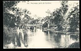 AUSTRALIE SYDNEY / Paysage Australien / - Sydney