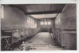 Ecole Nationale Vétérinaire D´ALFORT - Une Des Salles Du Chenil - Très Bon état - Maisons Alfort