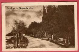 BIOGRAD N/m ( Near Zadar ) - Park Kraljevica Petra  ( Croatia ) * Travelled 1938. * Edition I. PELICARIC - Croatia