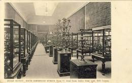 SOUTH KENSINGTON MUSEUM - INDIAN SECTION - 2 Scans - London Suburbs