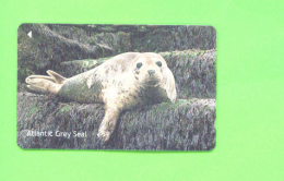 JERSEY - Magnetic Phonecard As Scan/Seal - Ver. Königreich