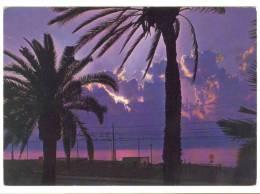 B2739 Reggio Calabria - Tramonto Sullo Stretto / Viaggiata 1978 - Reggio Calabria