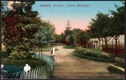 Funchal, Madeira, Jardim Municipal - Madeira