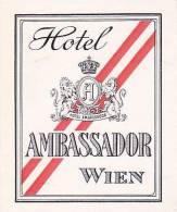 AUSTRIA WIEN HOTEL AMBASSADOR VINTAGE LUGGAGE LABEL - Hotel Labels