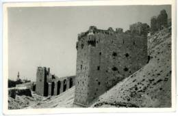 Alep, Foto, 25.12.1949 - Sri Lanka (Ceylon)