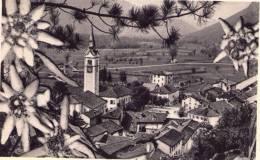 CAPORETTO   * - Slovenia