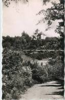 CPSM 38 CREMIEU CHATEAU DE SAINT JULIN  1951 - Crémieu