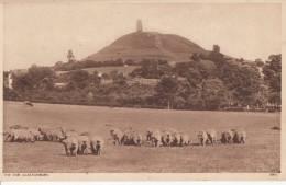 C1920 GLASTONBURY ABBEY - THE TOR - England