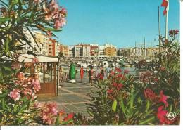 28438       Le  Cap  D,agde   Le Port - Agde