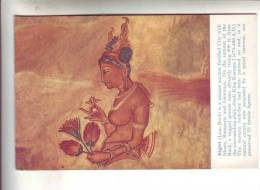7 Superbes Cartes Archéologique - Postales