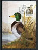 """Liechtenstein 1990 Maxicart  Mi.Nr.999,MK """" Jagdwesen-Stockerpel-Anas Platyrhynchos"""" 1 MK Used - Ducks"""