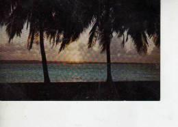 PUESTA DEL SOL EN LA COSTA ATLANTICA  COLON     OHL - Panama