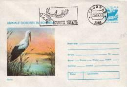 Romania Cancelled Postal Stationery, Bird - Storks & Long-legged Wading Birds