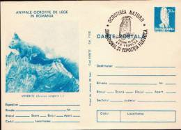 Romania Cancelled Postal Stationery Card, Squirrel - Knaagdieren
