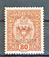 Trentino Alto Adige 1918 SS 1 N. 13  80H Bruno Rosso MH, Frimato Biondi - Trentino
