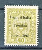 Trentino Alto Adige 1918 SS 1 N. 10  40H Oliva MLH Cat. € 120 - Trentino