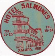 MEXICO XALAPA HOTEL SALMONES VINTAGE LUGGAGE LABEL - Hotel Labels