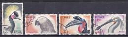 Guinea - 1962 - ( Birds ) - Used - Guinea (1958-...)