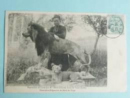 Voué - Exposition De Lions Par Mr L'Abbé GERARD,Curé De Voué, Naturaliste Préparateur Du Musée De Troyes - Autres Communes