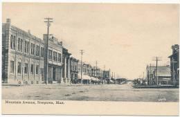 Mountain Avenue, Neepawa, Man. - Canada  - Circa 1910 -- # 601,196 - Manitoba