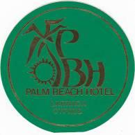 CYPRUS LARNACA PALM BEACH HOTEL VINTAGE LUGGAGE LABEL - Etiketten Van Hotels