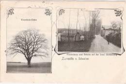 Zarrentin Am Schaalsee Förster Haus Insel Stintenburg Klopstock Eiche 31.7.1909 Gelaufen - Zarrentin
