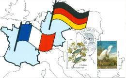 129 Carte Officielle Exposition Internationale Exhibition Traunreut 1995 FDC Deutsch-französische Freundschaft Flaggen - Flaggen