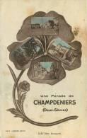 79 CHAMPDENIERS SAINT DENIS UNE PENSEE DE - Champdeniers Saint Denis